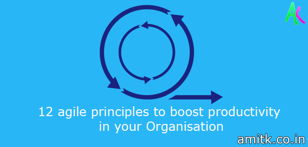12 agile principles to boost productivity in your Organisation